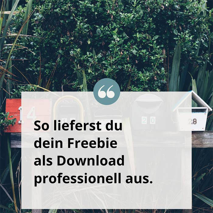 So lieferst du dein Freebie als Download professionell aus.