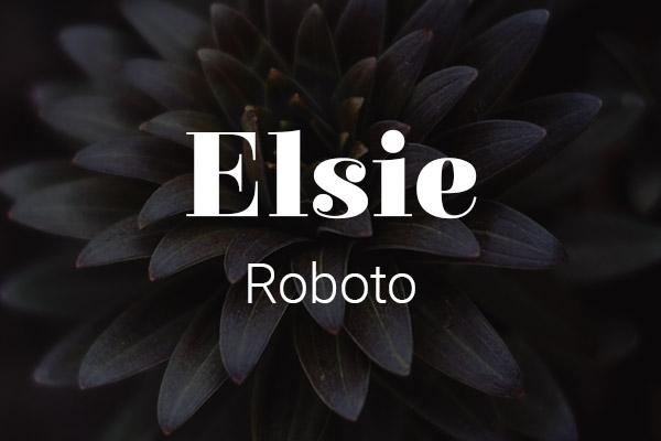 Schriftpaare für Website und Social Media: Elsie und Roboto.