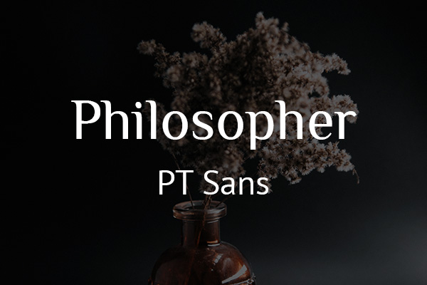 Schriftpaare für Website und Social Media: Philosopher und PT Sans.
