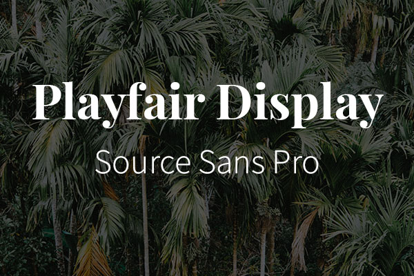 Schriftpaare für Website und Social Media: Playfair Display und Source Sans Pro.